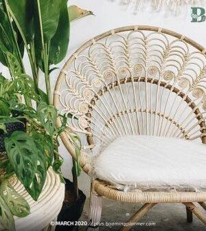 Ambar Rattan Chair
